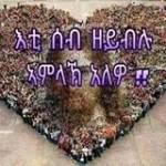 Tesfay Berhiwa