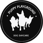 Puppy Playground Profile Picture